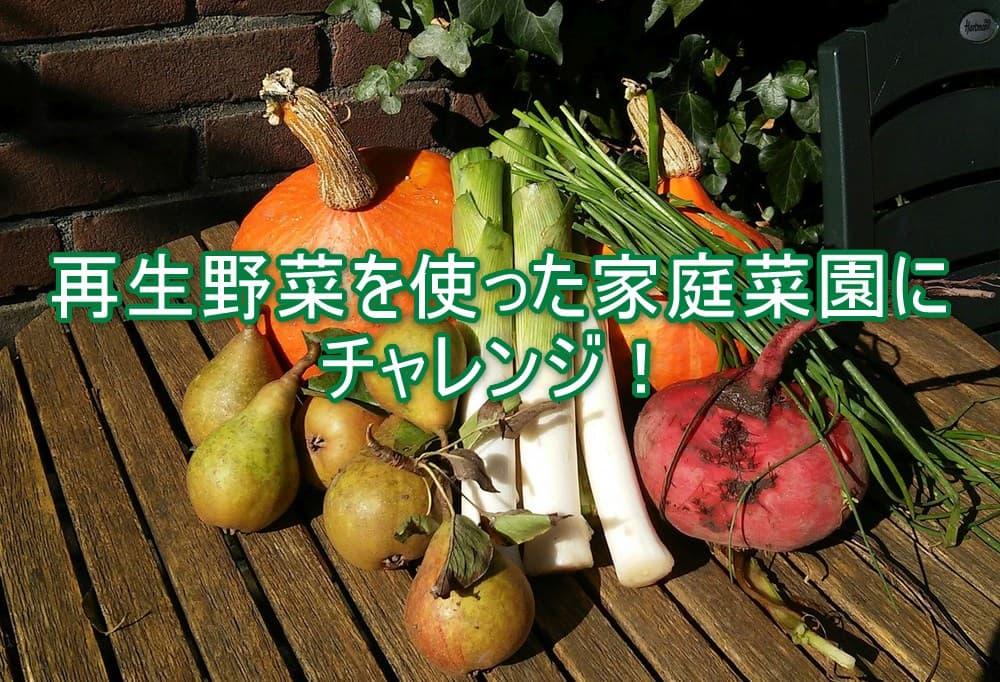 家庭菜園TOP画像